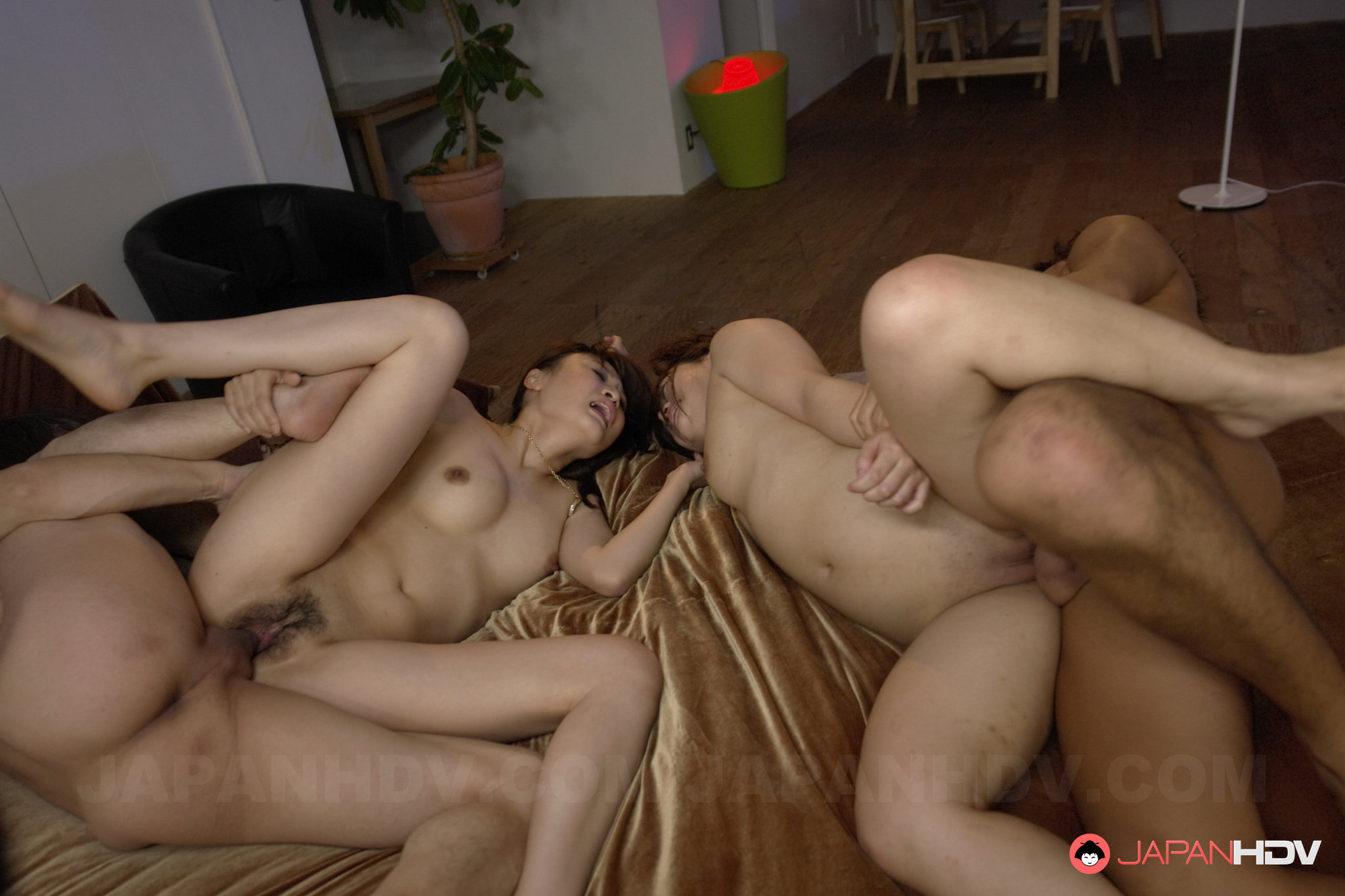 porno-video-svingeri-chehiya